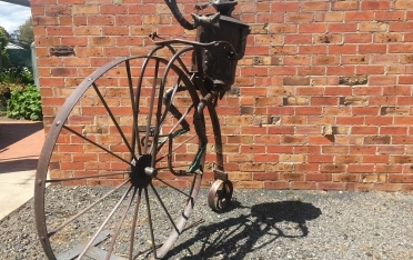 Frog on penny farthing